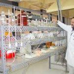 Centro de Tecnologia Mineral